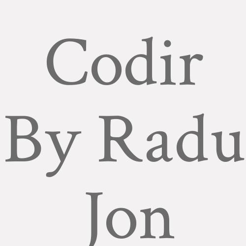 Codir By Radu Jon