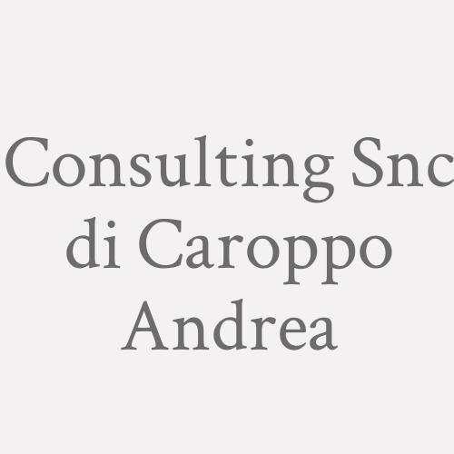 Consulting Snc di Caroppo Andrea