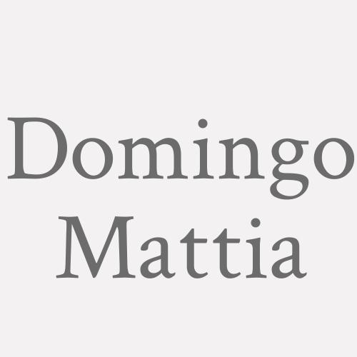Domingo Mattia