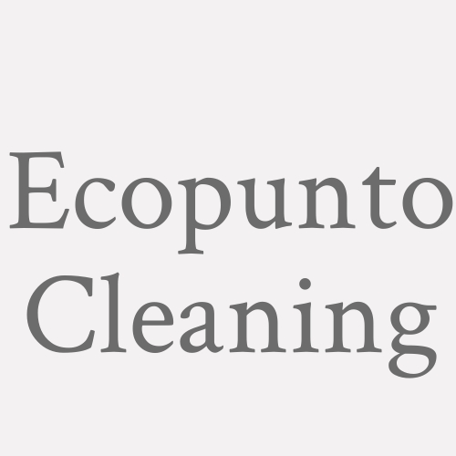 Ecopunto Cleaning