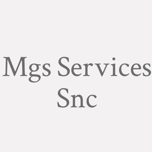 Mgs Services Snc