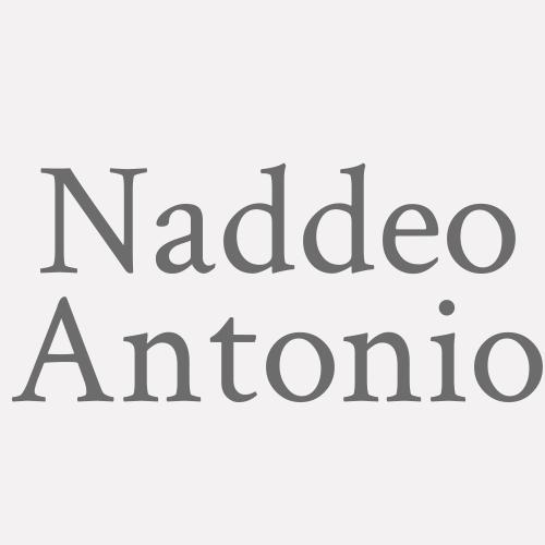 Naddeo Antonio