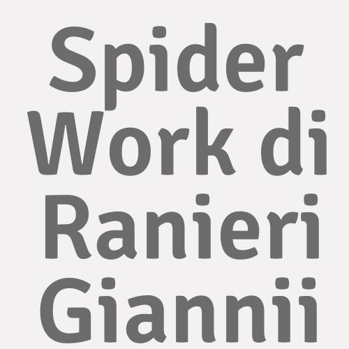 Spider Work Di Ranieri Giannii