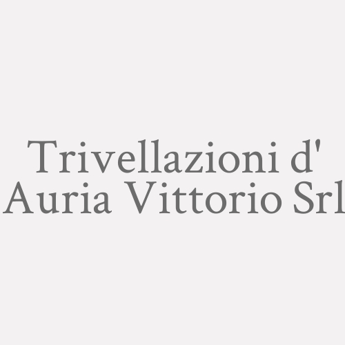 Trivellazioni D' Auria Vittorio srl