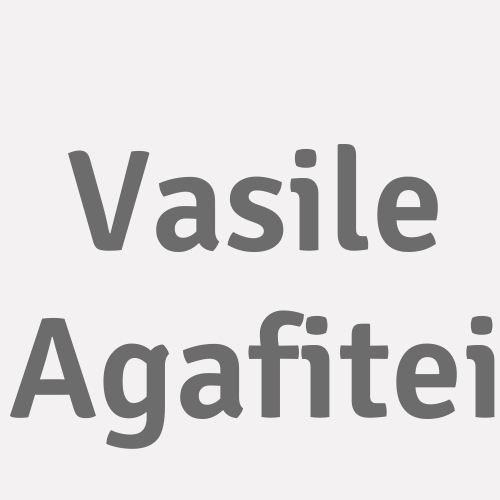 Vasile Agafitei