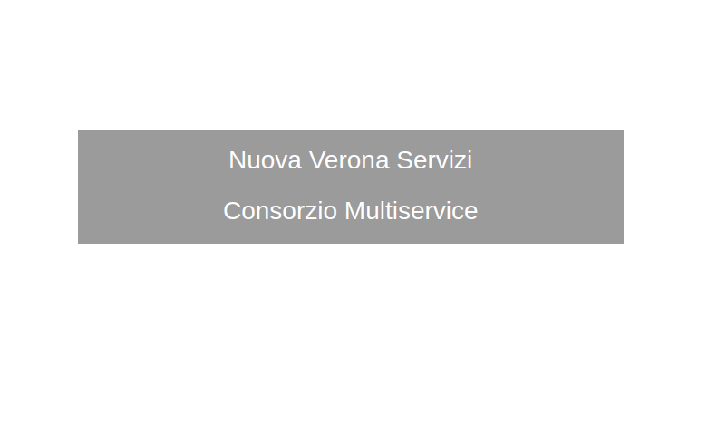 Nuova Verona Servizi Consorzio Multiservice