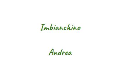 Imbianchino Andrea