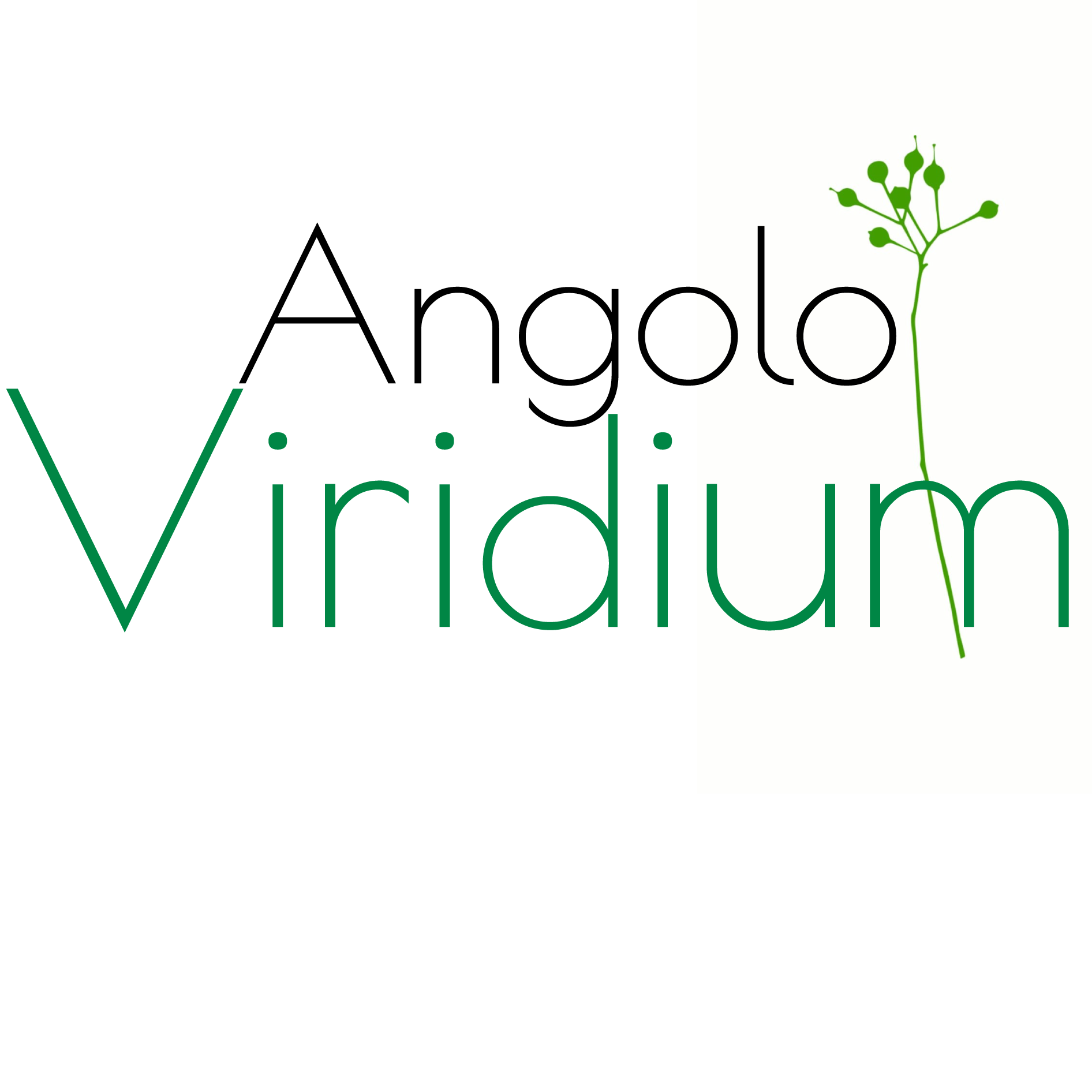 Angolo Viridium