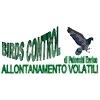 Birds Control