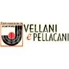 Vellani E Pellacani