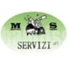 M.s. Servizi
