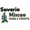 Saverio Misceo
