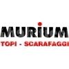 Murium