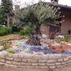 Foto: Giardinieri, cippatore, biotrituratore