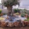 Foto: Giardinieri, biotrituratore, cippatore