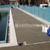 Restrutturare bagno , sostituzione piastrelle , porte e finestre, dipingere