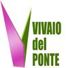 Vivaio Del Ponte