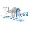 Teknogess