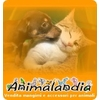 Animalandiaweb