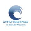 Carlini Service