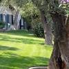 Creazione giardino al posto di cortile in cemento