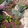 Manutenzione aiuole/giardino