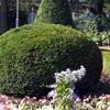 realizzare lavori in giardino a Varese