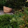 Calcolo mq confine proprietà di un giardino a imola