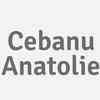 Cebanu Anatolie