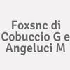 Foxsnc di cobuccio G e angeluci M