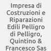 Impresa di Costruzioni e Riparazioni Edili Pelligro di Pelligro, Quintino & Francesco Sas
