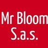 Mr Bloom S.a.s.