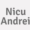 Nicu Andrei