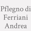 Pf.legno Di Ferriani Andrea
