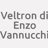 VELTRON di Enzo Vannucchi