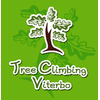 Tree Climbing Viterbo