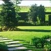 Manutenzione giardino zona formello (roma)