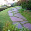 Trattamento antizanzare per giardino condominiale