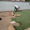 Installare manto erboso prato pronto
