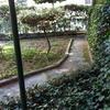Ristrutturare giardino