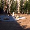 Seminare giardino