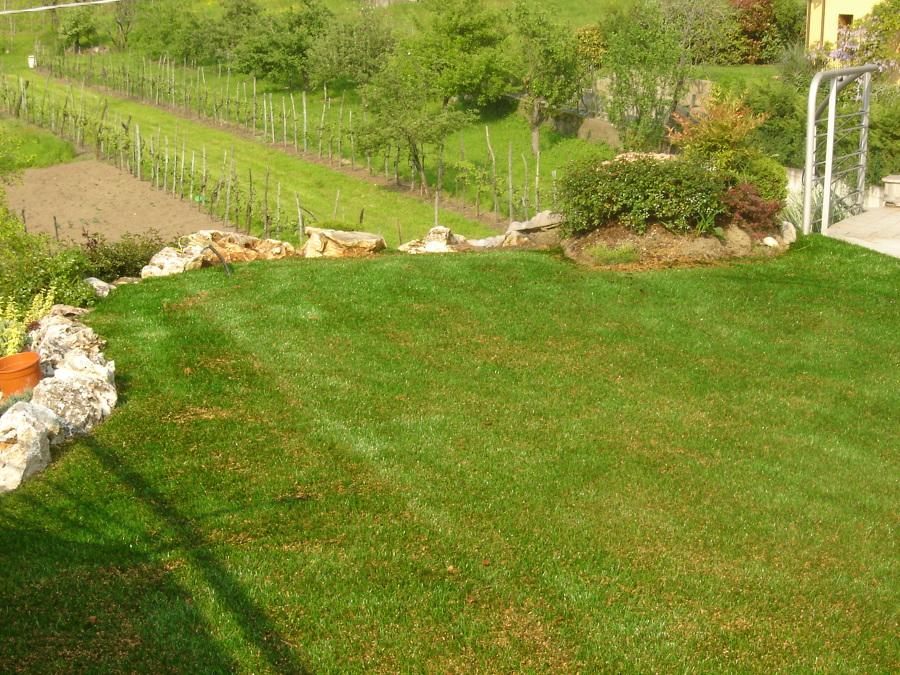 Offerta realizzazione giardini sintetici a 30euro mq - Giardino erba sintetica ...