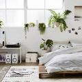 Camera da letto con piante
