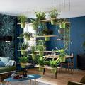divisorio con piante