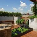 fontana in terrazza con piante
