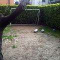 M-ideas Garden
