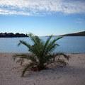 punto di ripresa spiaggia locale