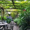 Terrazza con copertura vegetale