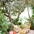 terrazza con piante