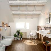 Baño-limpieza4